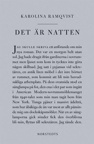 bokomslag Det är natten : författaren och den som skriver