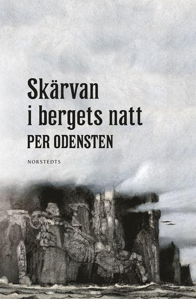 bokomslag Skärvan i bergets natt