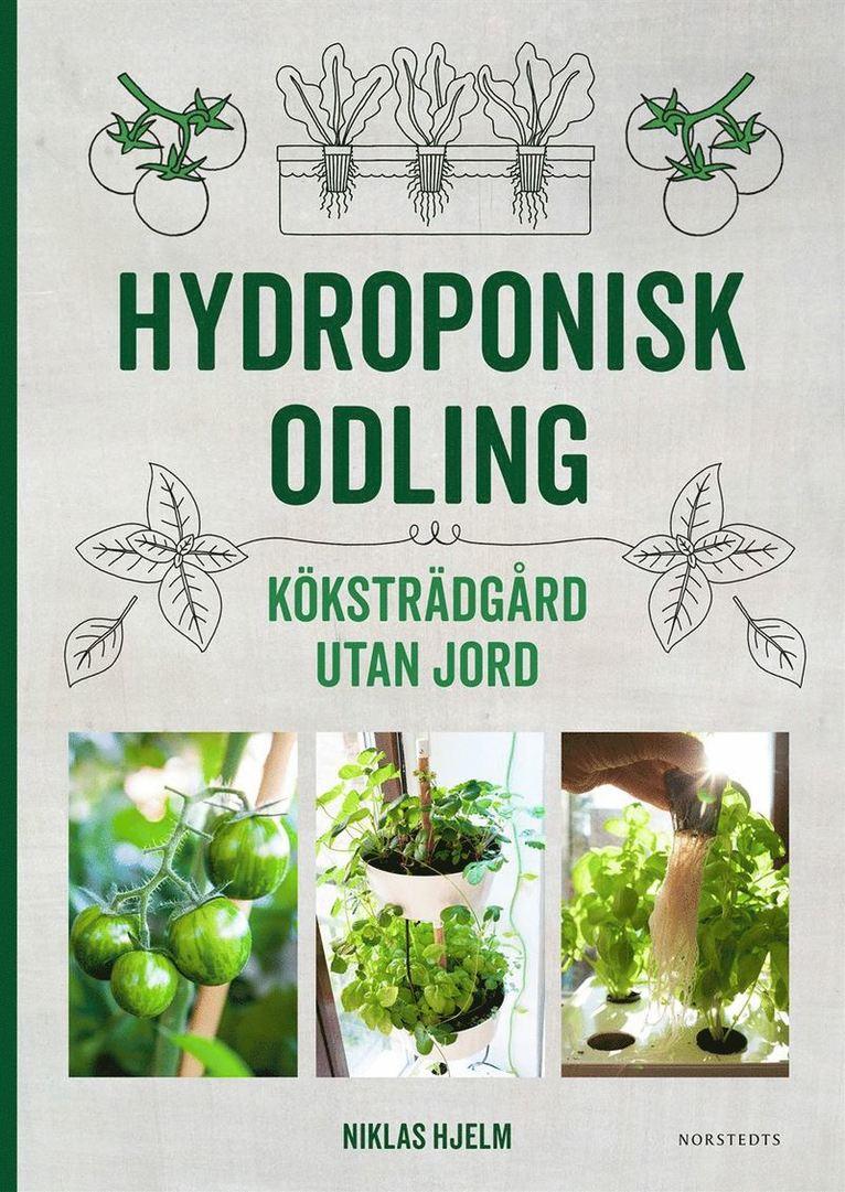 Hydroponisk odling : Köksträdgård utan jord 1