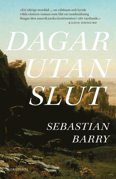 bokomslag Dagar utan slut