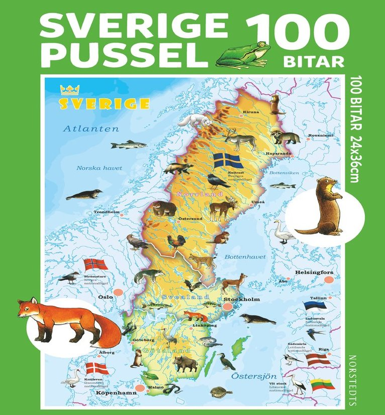 Pussel 100 bitar Sverige 1
