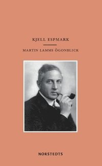 bokomslag Martin Lamms ögonblick