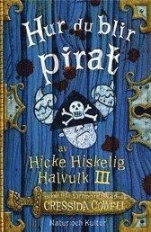 bokomslag Hur du blir pirat