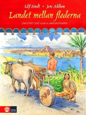bokomslag Landet mellan floderna : livet i det gamla Mesopotamien