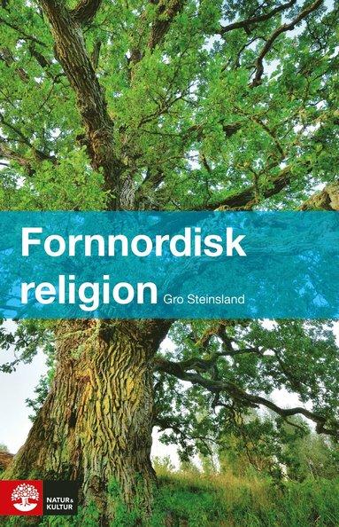 bokomslag Fornnordisk religion