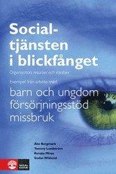 bokomslag Socialtjänsten i blickfånget : organisation, resurser och insatser