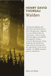 bokomslag Walden