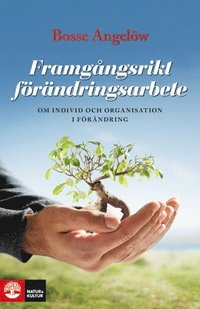 bokomslag Framgångsrikt förändringsarbete : om individ och organisation i förändring