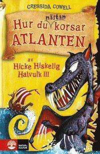 bokomslag Hur du nästan korsar Atlanten