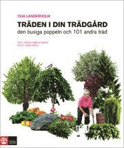 bokomslag Träden i din trädgård : den busiga poppeln och 101 andra träd