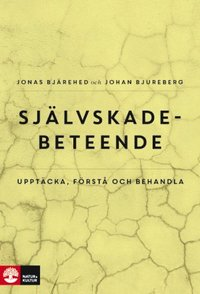 bokomslag Självskadebeteende : Upptäcka, förstå och behandla