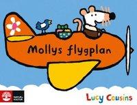 bokomslag Mollys flygplan