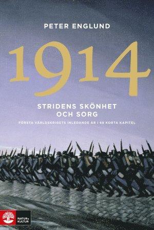 bokomslag 1914 : stridens skönhet och sorg : första världskrigets inledande år i 68 korta kapitel