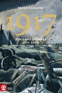 bokomslag 1917 Stridens skönhet och sorg : första världskrigets fjärde år i 108 korta