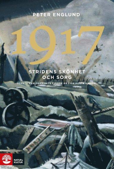 bokomslag Stridens skönhet och sorg 1917 : första världskrigets fjärde år i 108 korta kapitel
