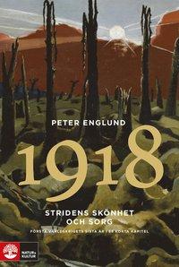 bokomslag Stridens skönhet och sorg 1918 : första världskrigets femte år i 89 korta k