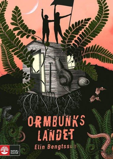 bokomslag Ormbunkslandet