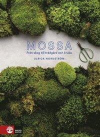 bokomslag Mossa : I skog, trädgård och kruka