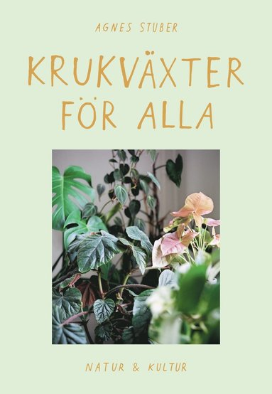 bokomslag Krukväxter för alla