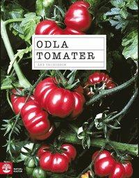 bokomslag Odla tomater