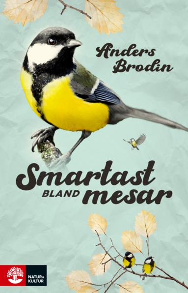 bokomslag Smartast bland mesar