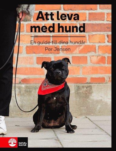 bokomslag Att leva med hund : en guide till dina hundår