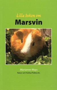 bokomslag Lilla boken om marsvin