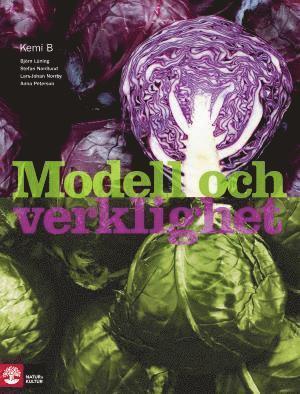 bokomslag Modell och verklighet Kemi 2/B lärobok, andra upplagan