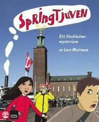 bokomslag Springtjuven - ett Stockholmsmysterium