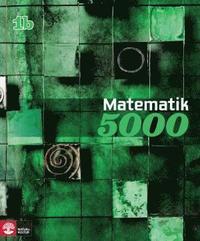 bokomslag Matematik 5000 Kurs 1b Grön Lärobok
