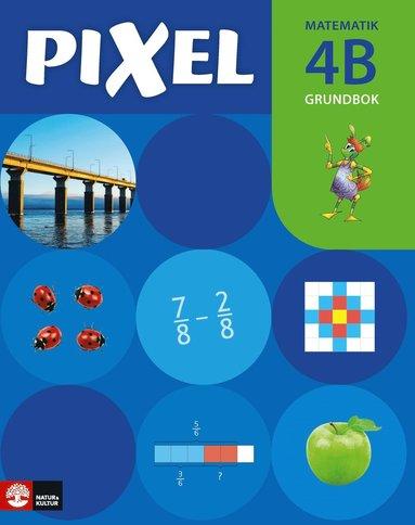bokomslag Pixel 4B Grundbok, andra upplagan