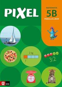 bokomslag Pixel 5B Parallellbok, andra upplagan