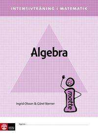 bokomslag Intensivträning ma åk 4-6 Algebra Elevhäfte