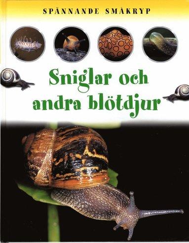bokomslag Spännande småkryp Sniglar och andra blötdjur
