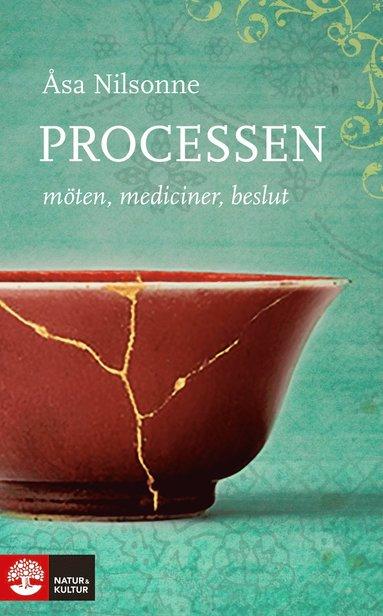 bokomslag Processen : möten, mediciner, beslut