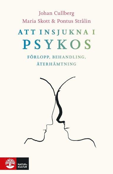 bokomslag Att insjukna i psykos : förlopp, behandling, återhämtning