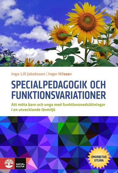 bokomslag Specialpedagogik och funktionsvariationer : att möta barn och unga med funktionsnedsättningar i en utvecklande miljö