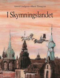 bokomslag I skymningslandet