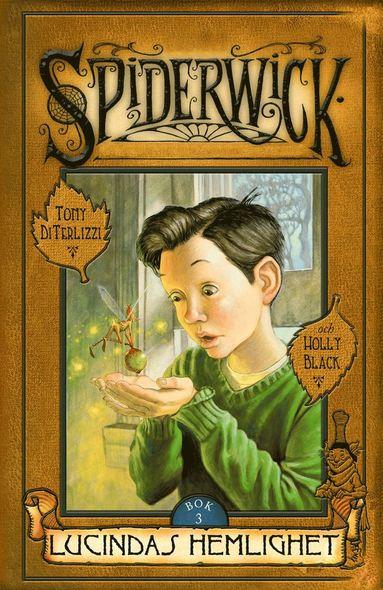 bokomslag Lucindas hemlighet