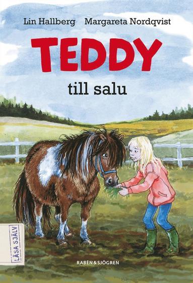bokomslag Teddy till salu