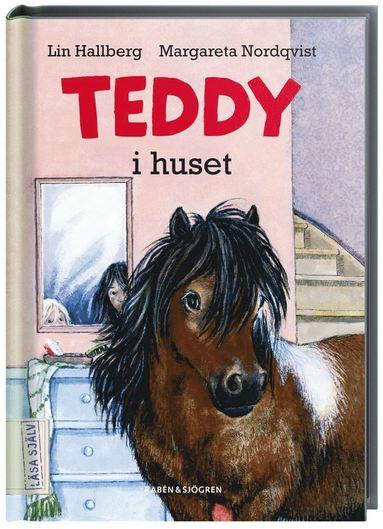 bokomslag Teddy i huset