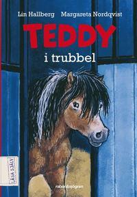 bokomslag Teddy i trubbel