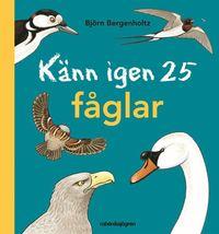 bokomslag Känn igen 25 fåglar