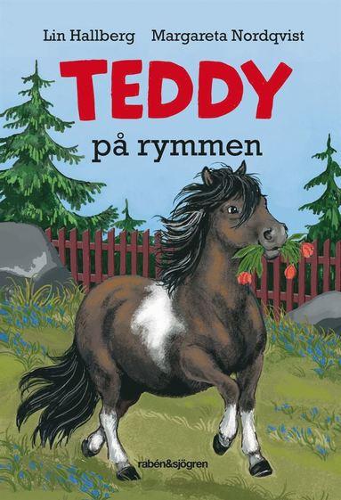 bokomslag Teddy på rymmen
