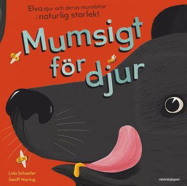 bokomslag Mumsigt för djur : elva djur och deras munsbitar i naturlig storlek
