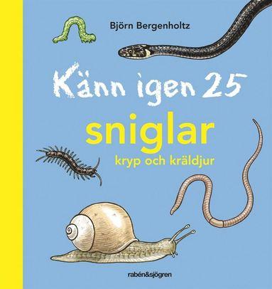 bokomslag Känn igen 25 sniglar, kryp och kräldjur