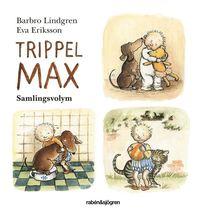 bokomslag Trippel-Max