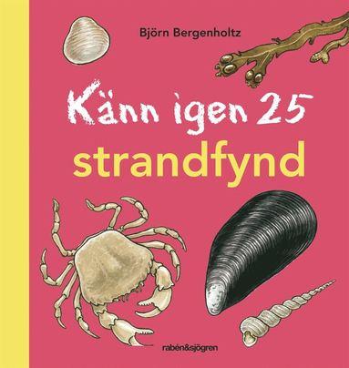 bokomslag Känn igen 25 strandfynd