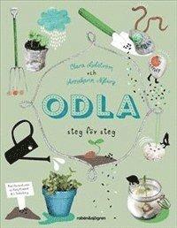 bokomslag Odla - Steg för steg