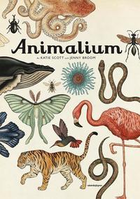 bokomslag Animalium